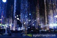 Ayala Triangle Gardens Lights & Sounds Show