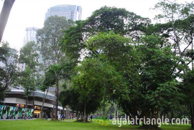 Ayala Triangle Gardens Restaurants